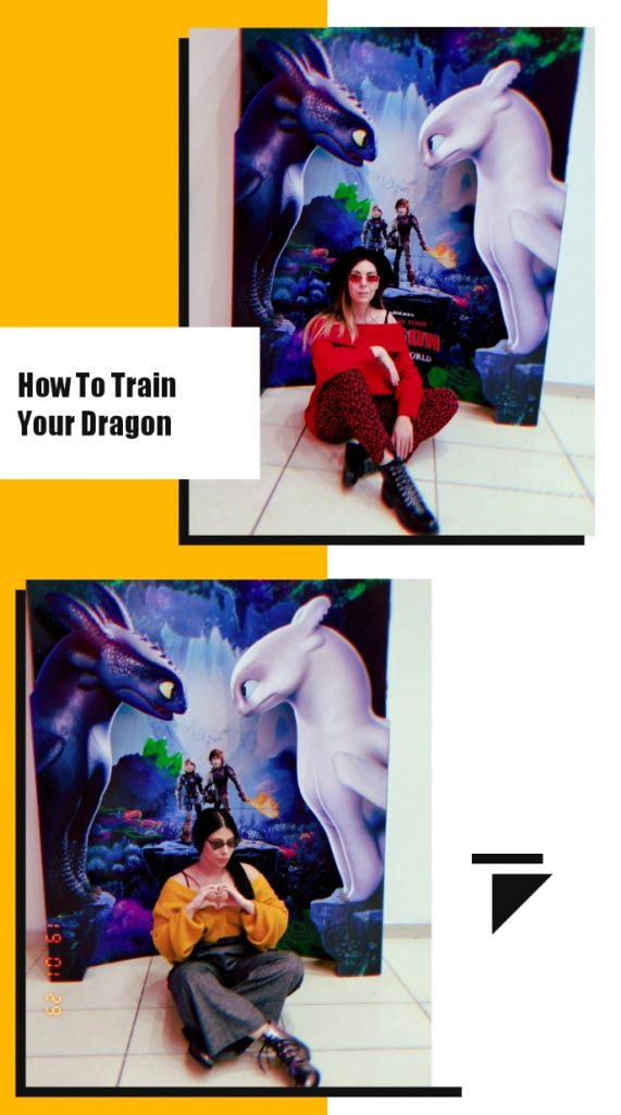 как да си дресираш дракон тайнствения свят